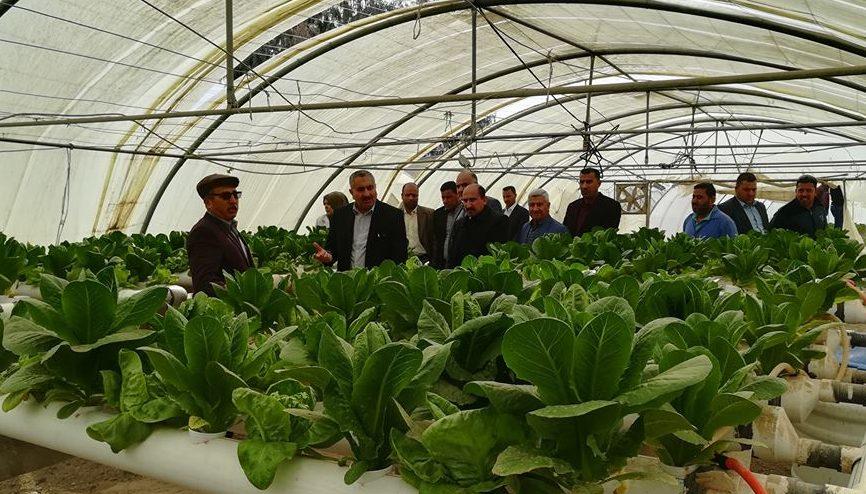 زيارة السيد رئيس جامعة كربلاء لكلية الزراعة